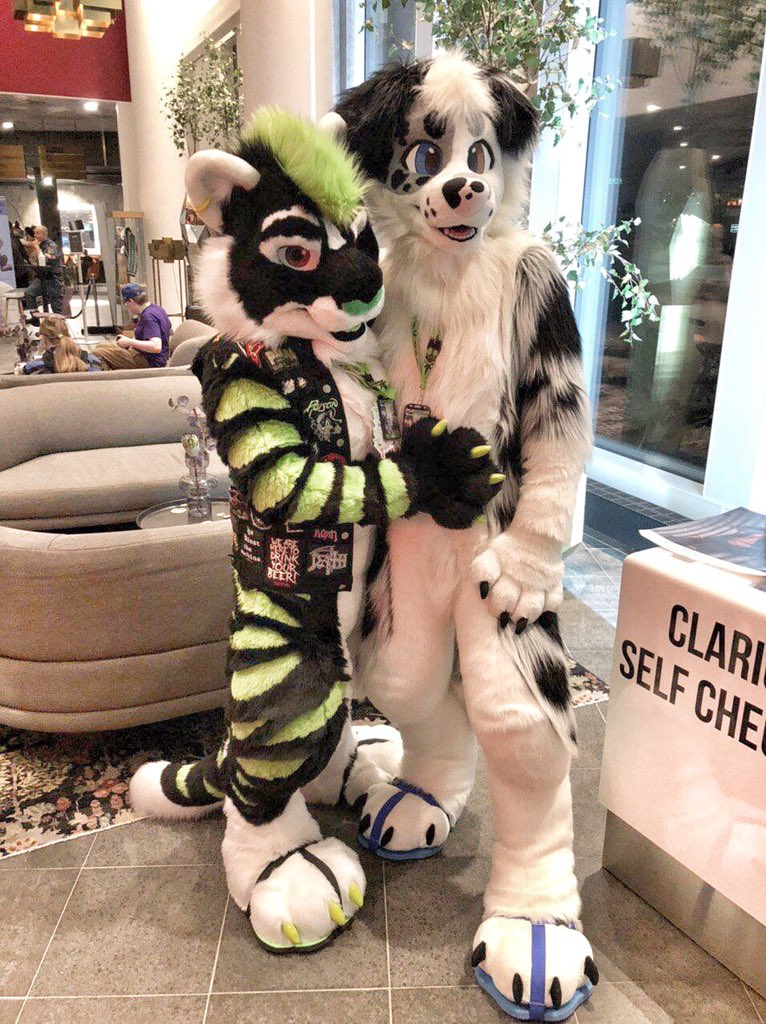 Met cute kitty @NeonBiscit at #NFC2020 #nordicfuzzcon  it was really awesome con and now heading  to #gdakon2020 :@TherrisPawpard<br>http://pic.twitter.com/M6gJqicSG4