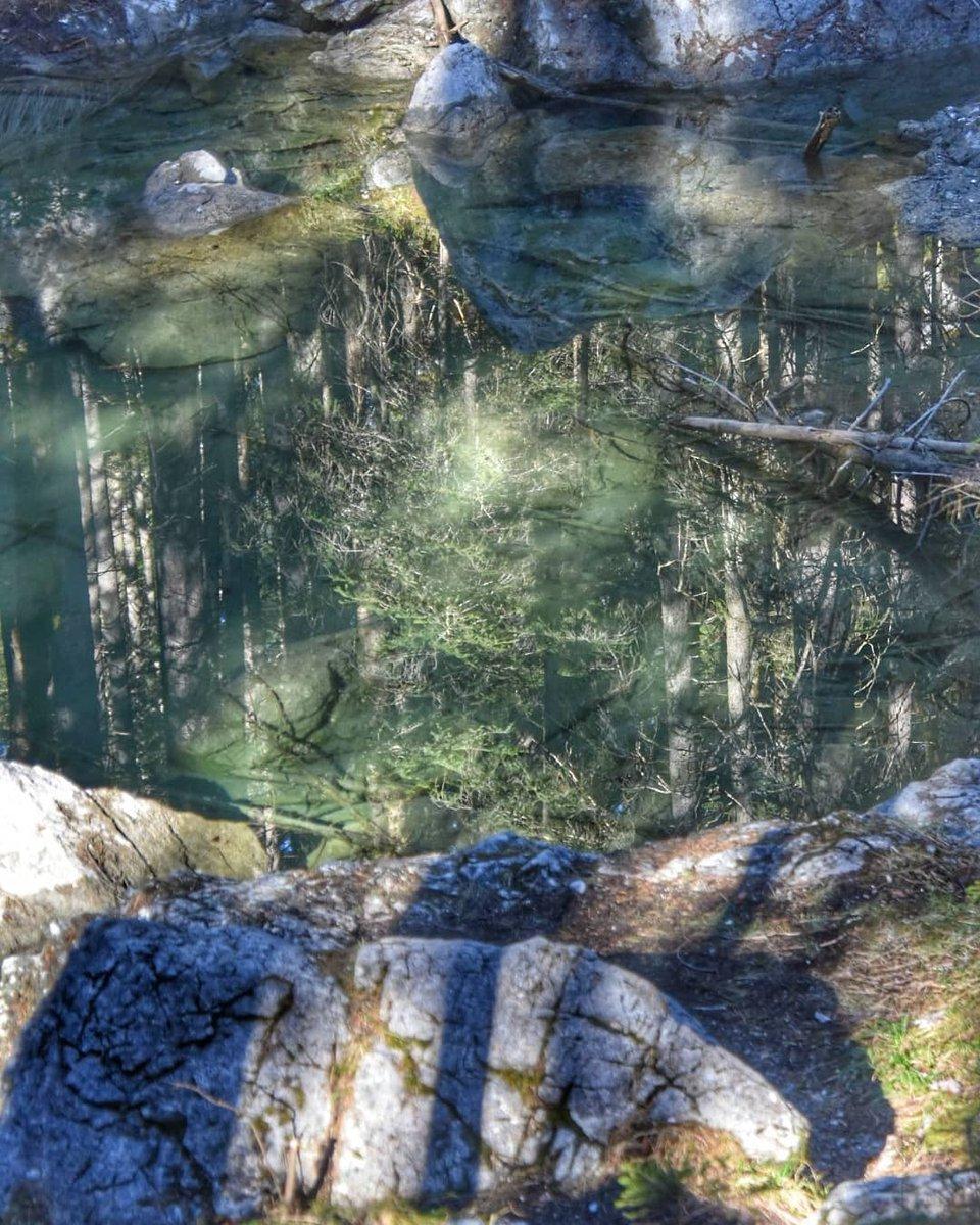 Mystische Spiegelung#drachenseelein #eibsee #bayernpic.twitter.com/ZLfsh4XNCa