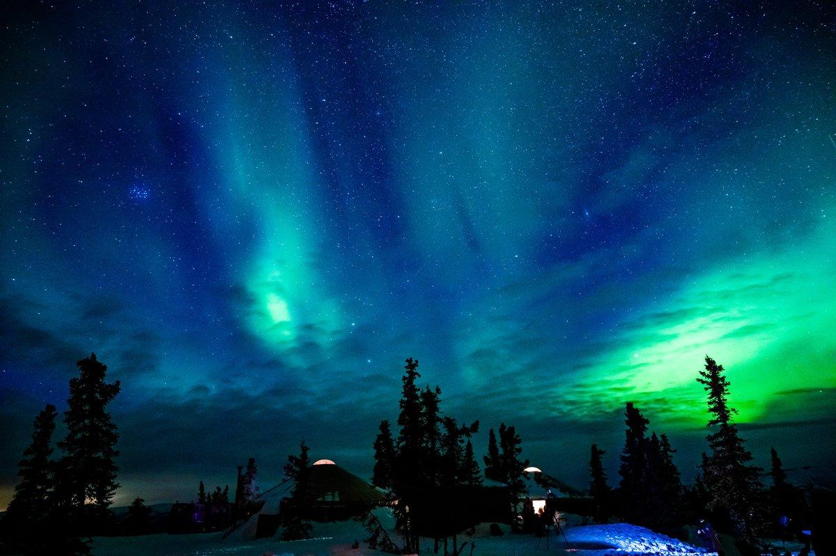 1日1枚、フェアバンクスのオーロラ写真。 観測用のコテージと一緒に撮ってみました。  雲とオーロラのおかげか、普通の星空写真と比べて、空が深くなった気がします。  #フェアバンクス #オーロラ #北極 #よりもい聖地巡礼旅 https://t.co/kgnyVgBE6Q