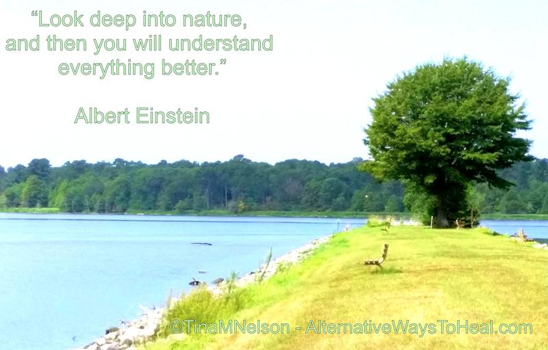 Look DEEP Into #NATURE - Then You Will Understand Everything Better - Einstein #SaveOurPlanet! AltWaysToHeal LoveNature! pic.twitter.com/ZrAcNz1Weg