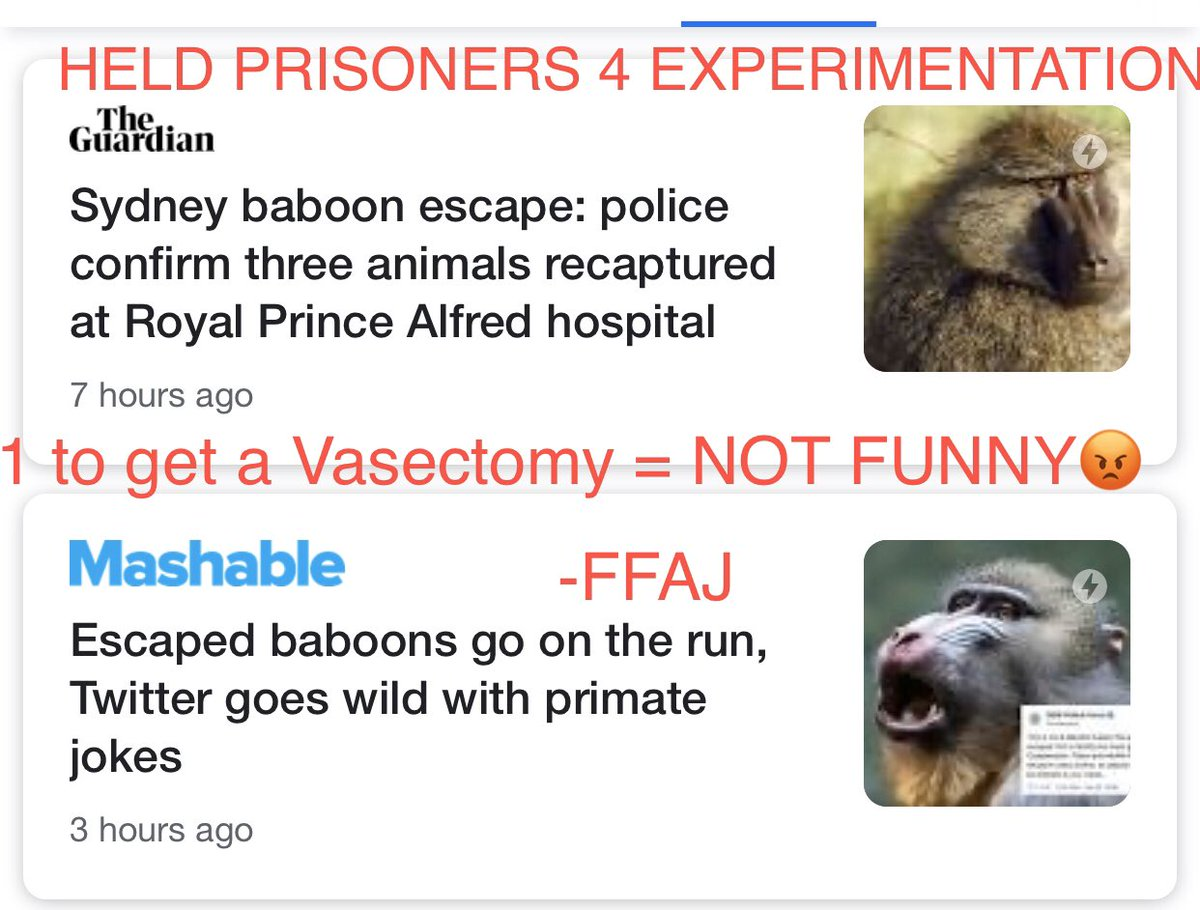@Animals1st @Cshells33Wells @nswpolice @CrueltyFreeIntl .@MarkPearsonMP Thank You #Animals Held #Prisoners For #Medical #Experimentation #Escape and You and .@nswpolice Makes #Jokes😡 The #Male Was To Get A #Vasectomy #How Would You #Men Like That #Forced On #You❓ #Shame On You‼️ #AnimalCruelty Is #NOJoke‼️ .@bencjenkins
