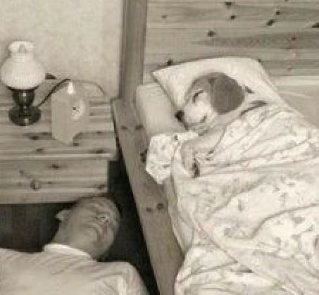 Good night  #Lifeisbeautiful <br>http://pic.twitter.com/tj9UGuRmnb