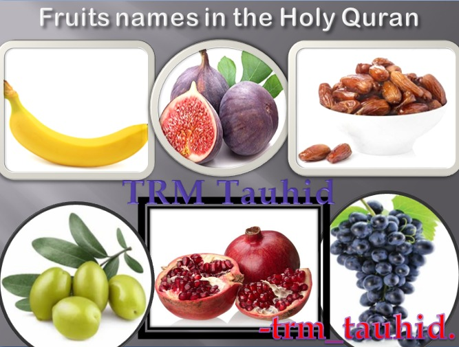 Fruits Names Mentioned in the Holy Quran. Click here: https://trmtauhid79.blogspot.com/2020/02/fruits-names-in-holy-quran.html…   #fruits #fruitsinquran #Quran #Islam #TRM_Tauhid pic.twitter.com/wzMbCHEzTo