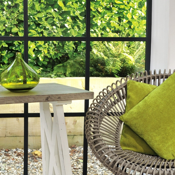 Bring a little sunshine and green to your home.pic.twitter.com/XdWDWPS7f7