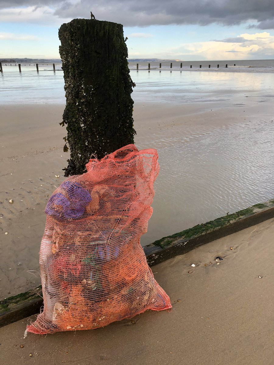 Found a mussel bag on the afternoon dog walk so means only one thing......... @2minutebeachclean #litterpick #fishing #fishingnets #fishingwire #saveourseas #saveourplanet #dogwalk #workout #responsibility #lovemybeach #beachlifepic.twitter.com/GRvt6r6Hr1