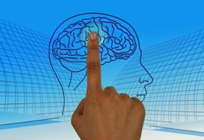 New Link Between Inflammation and Mental Illness Found   #inflammation  #brain  #braingames  #braininjury  #MentalHealthAwareness  #MentalHealthMatters   #Neurology  #psychology  #nutrition  #Wellbeing            https://buff.ly/39RkEL6