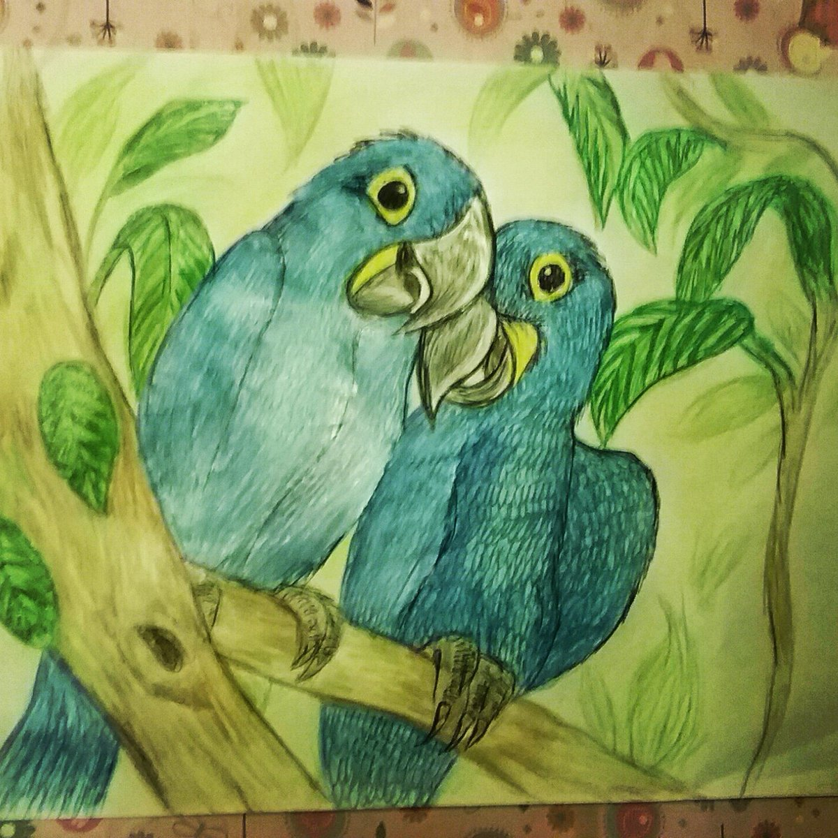 Hyacinth Macaws #Artist #Drawing #Birds