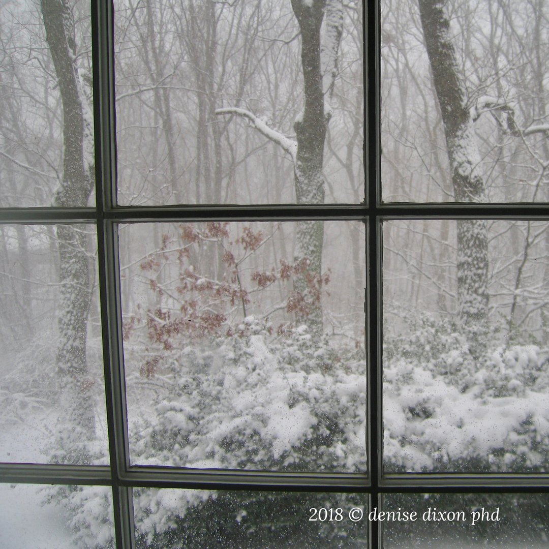 """""""Snowy day"""". #LifeIsBeautiful <br>http://pic.twitter.com/hvx22Yl58g"""