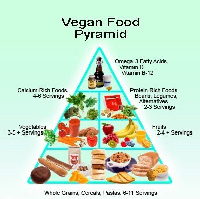 Need help with getting your daily nutrients as a vegan? Take a look at this! #vegan  #vegetarian  #fitfam  #foodie  #eatwell  #nutrients  #nutrition