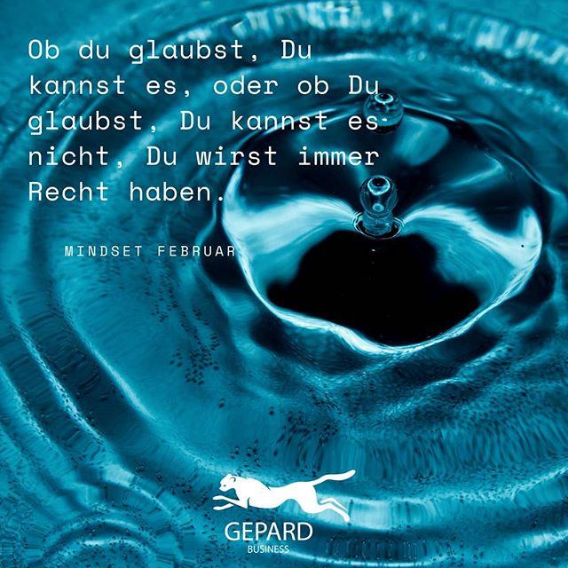 𝗠𝗶𝗻𝗱𝘀𝗲𝘁 𝗙𝗲𝗯𝗿𝘂𝗮𝗿  Was glaubst du?  . . . Hashs #glaube #recht #wasser #mindsetfebruar #zitat #erkenntnis #henryford #weisheit #erfolgsformel #denkweise #gepardbusinesspic.twitter.com/zIrqypv9sR