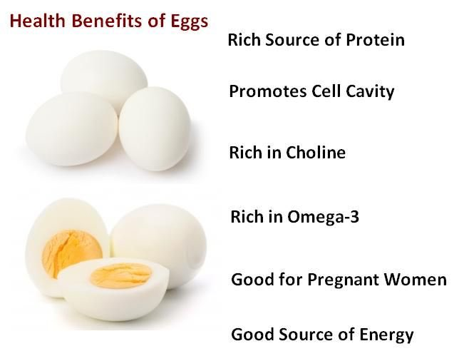 Egg facts. #instagram #breakfast #dessert #foodpics #pizza #foodpic #instadaily #travel #vegan #foods #instalike #photography #fitness #followme #fun #drinks #cake #friends #chocolate #happy #sweet #amazing #hungry #italianfood #comida #music #foodlovers #foodblog #chicken #smile
