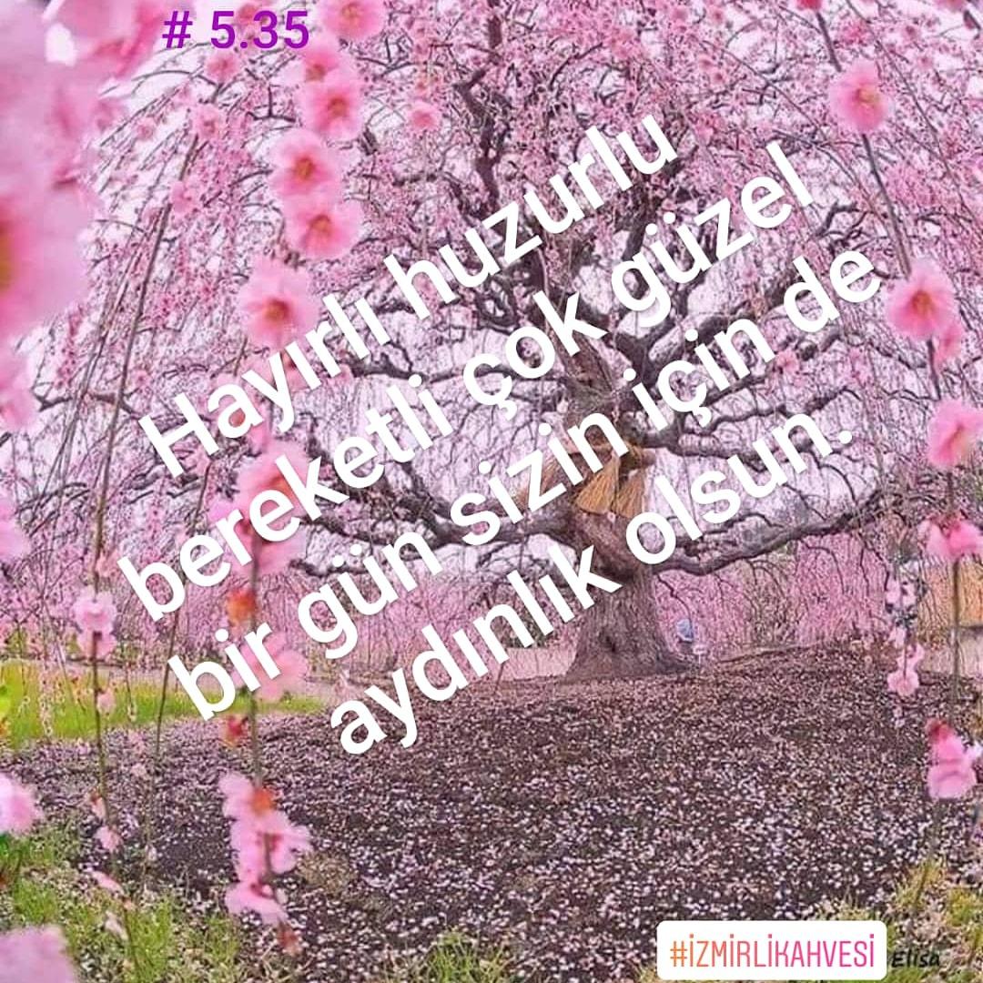 Herşeye rağmen inadına gülümseyin... #izmirlikahvesi #İZMİR #izmirlilerburada #izmirliyiz #izmirim #izmir #izmiremlak #izmirli #izmir#i̇zmir #izmir#izmirdeyasam #izmirdeyaşampic.twitter.com/cROJIMn0H0