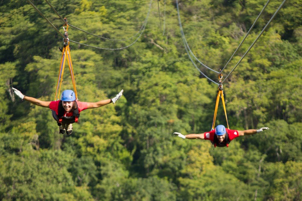 #WildWednesday #MindBlowing #Excursions Have you been on a #CloudForest In #CostaRica Imagine walking through the clouds at #Monteverde Forest Biological Reserve  Then: #SkyTrek is a #zipline circuit nearby  #unforgettable #experiences   Contact me to plan your ultimate vacaypic.twitter.com/Ua1YlugPAj