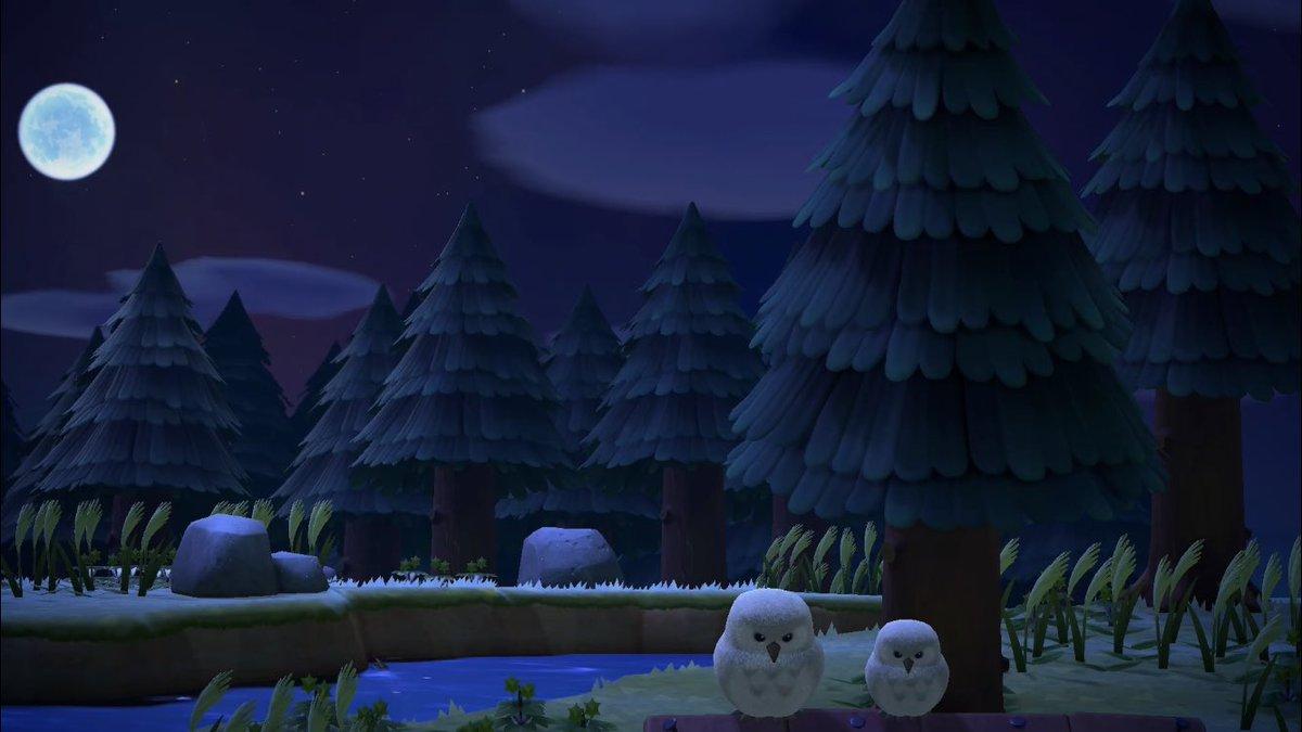 "🌸 Animal Crossing New Horizons on Twitter: ""Night x ACNH ..."