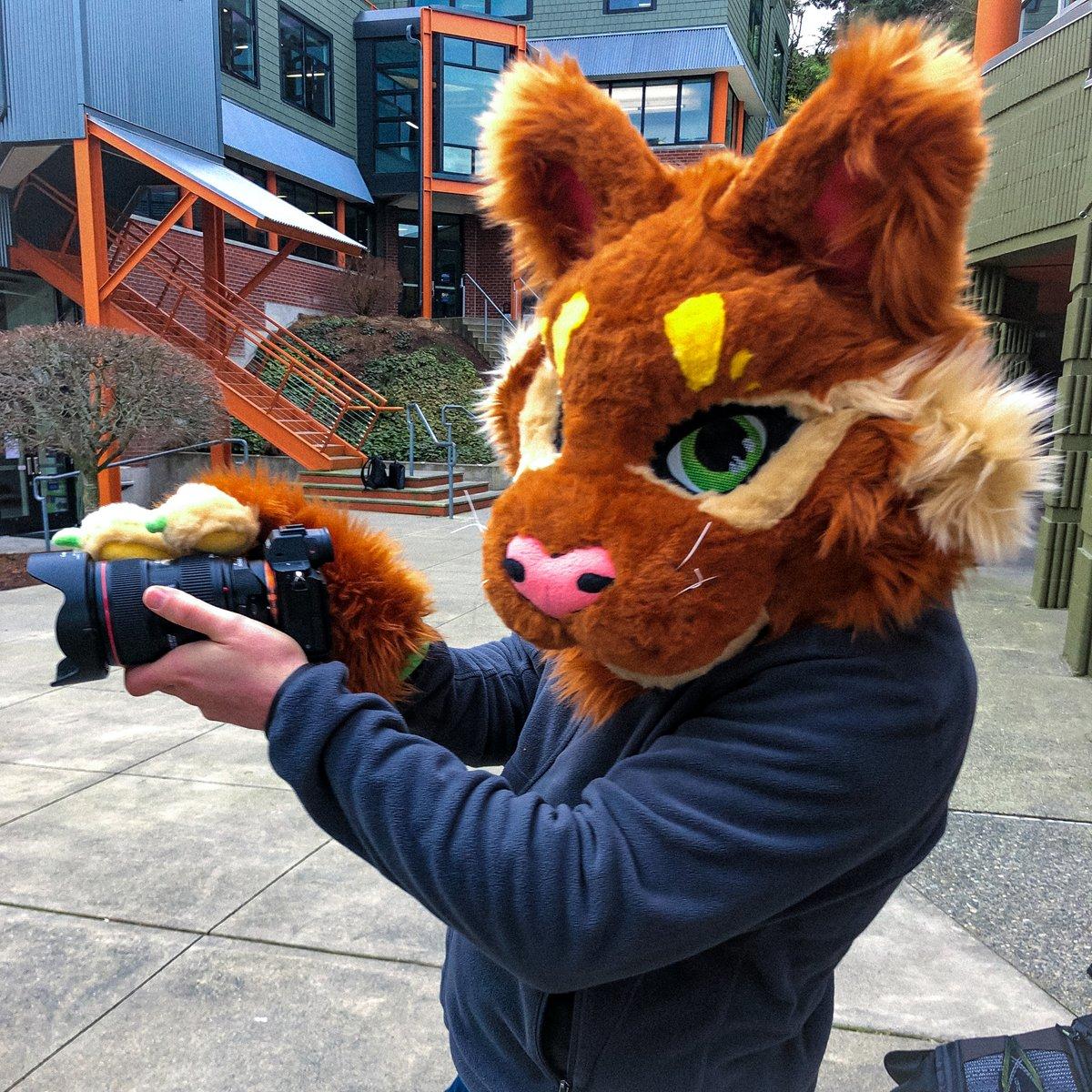"""You gotta be kitten me!"" 😹 Nick having fun as a Wildcat #behindthescenes at Seattle Country Day School @scdscommunity"