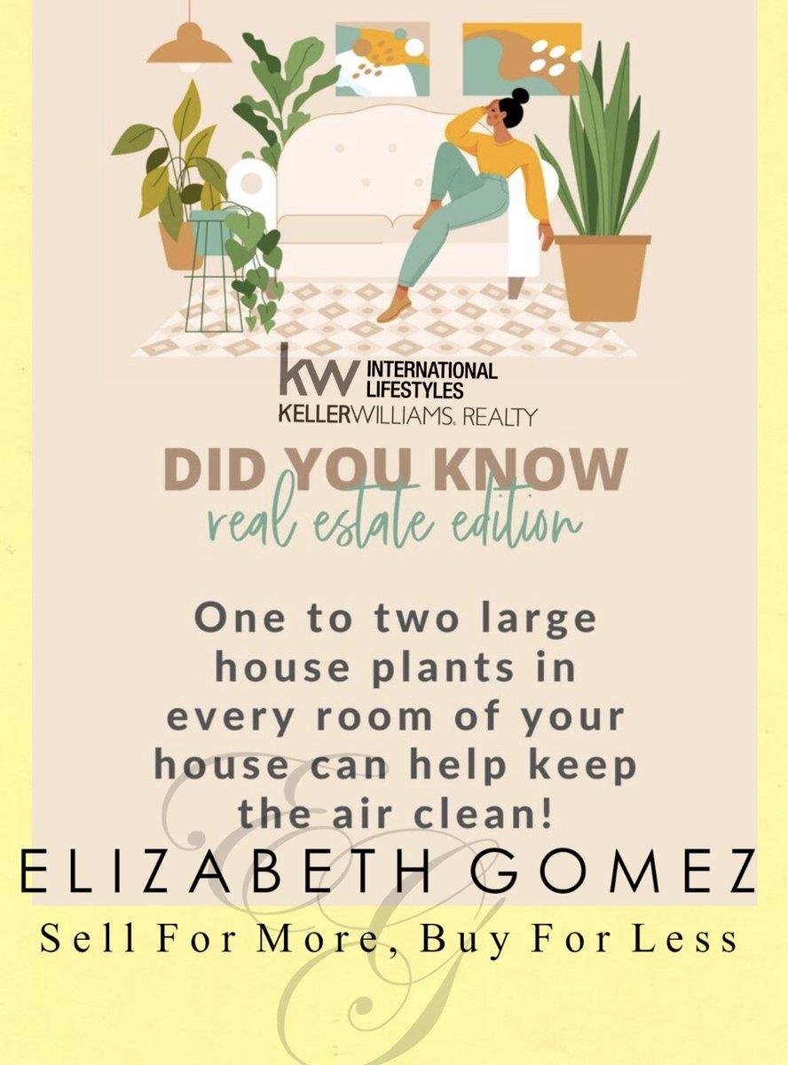 #homeremedies #homesweethome #askmehow #kellerwilliams #kellerwilliamsdoral #tips #tricks #yourrealtor #realty #ready #make #move #likebackalways #followmepic.twitter.com/zFy8DUnYay