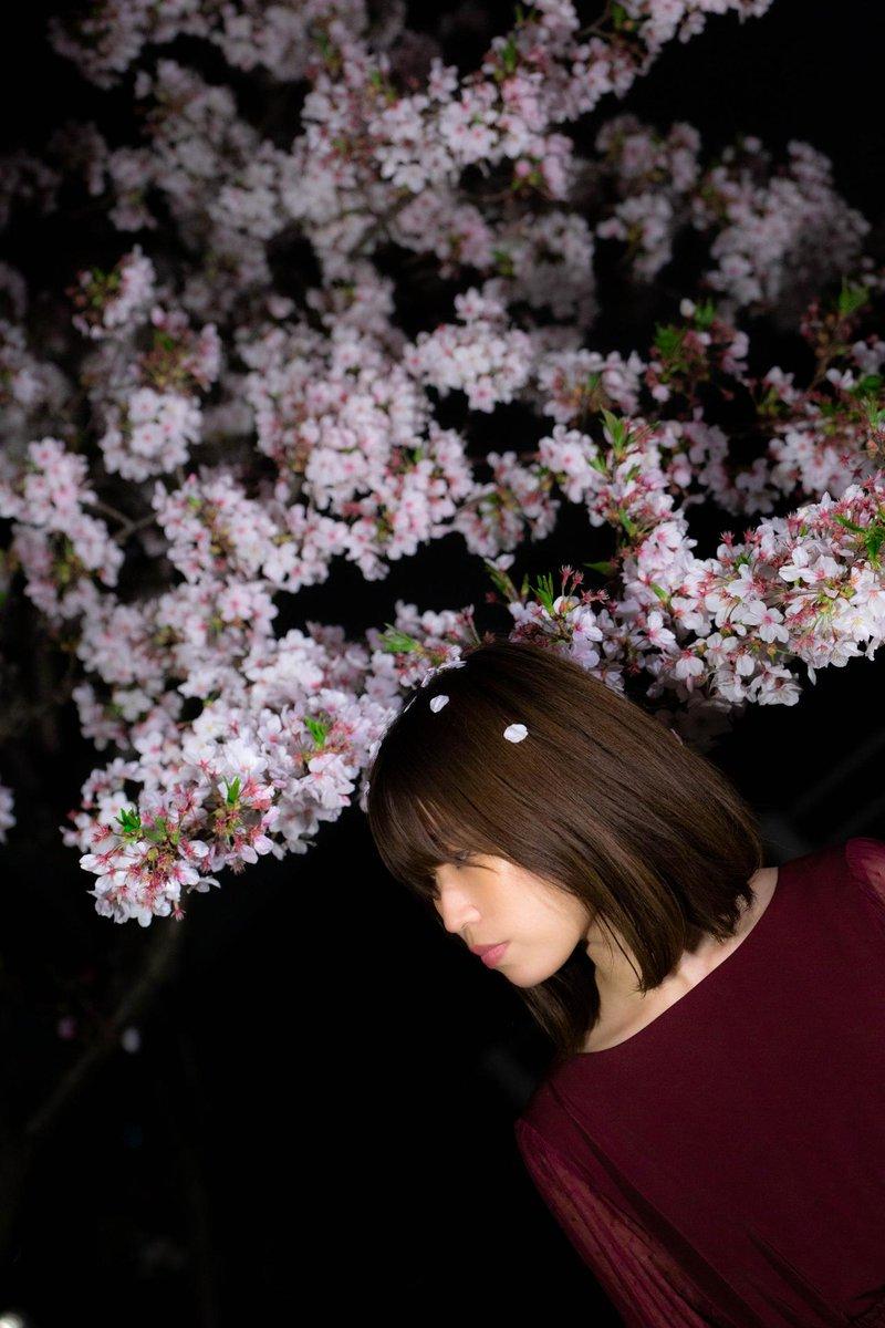 Portrait.  model : Mai from XIII Atelier  #portraits #portraitphotography #photography #photographer #PhotoOfTheDay #ポートレート #ポトレ #ファインダー越しの私の世界 #写真で伝えたい私の世界 #桜 #夜桜 #被写体募集