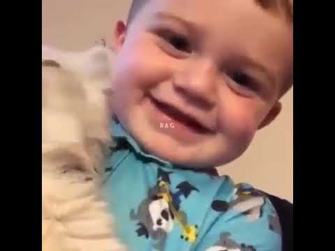 Cute Baby and kitten say  Meow lovely   #Cats #Cat #Kittens #Kitten #Kitty #Pets #Pet #Meow #Moe #CuteCats #CuteCat #CuteKittens #CuteKitten #MeowMoe   #Beautiful #BeautifulCat #BeautifulKittens #Best #BestVideo #Bestvideo #Cat      .