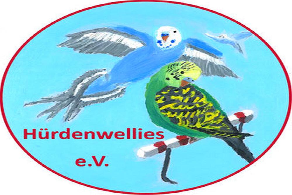Sittiche24 zu Besuch bei den Hürdenwellies in Gelsenkirchen! Tierschutz der ganz besonderen Art!  https://www.sittiche24.de/4695/sittiche24-zu-besuch-bei-den-huerdenwellies-in-gelsenkirchen-tierschutz-fuer-ganz-besondere-wellensittiche/…  #tierschutz #hürde #handicap #behinderung #vogelliebe #wellensittiche #wellies #sittiche24 #hilfe #spende #hürdenwellies #ilovebirds #vögel #tierliebe pic.twitter.com/a0jRr1Ehxt