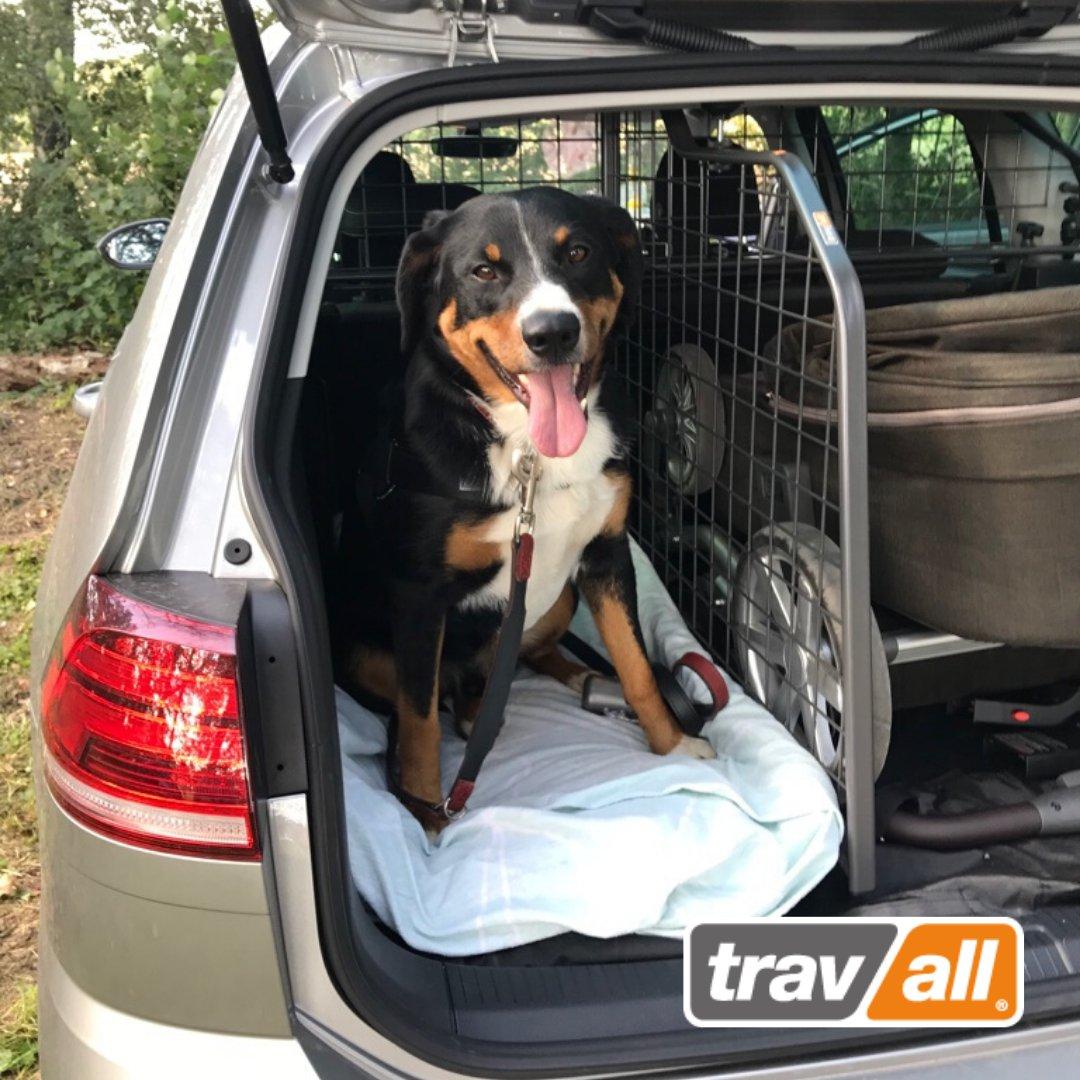 Wir von #Travall lieben Fotos unserer vierbeinigen Kunden! Ist euer Kofferraum auch so gut aufgeteilt? http://www.travall.de #Auto #Zubehör #hunde #hundefotografie #hundefreunde #enjoythejourney #TravallorNothingpic.twitter.com/lgCUzJsVZM
