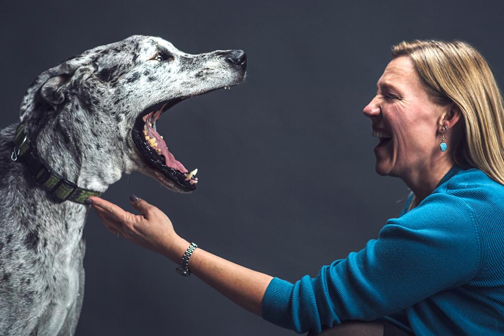 Dogs Wanted for Massive Study on Aging in Canines https://ift.tt/32Dfy2R #dogsoftwitter #dogoftheday #cute #chihuahua #germanshepherd #pug #animal #labrador #corgi #maltese #bichonfrise #animalpic.twitter.com/rngilsFMI1