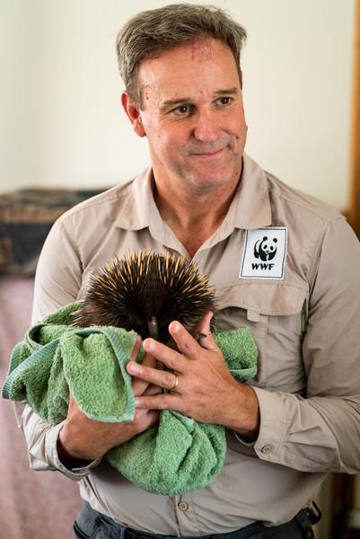 【📻アーカイブ】昨日放送した『オーストラリア森林火災 ご支援の気持ちは、日本からオーストラリアへ』は下記からお聴きいただけます。 #ワンプラネット © WWF-Australia / Matthew Harris👂Youtube👂Spotify📻番組情報