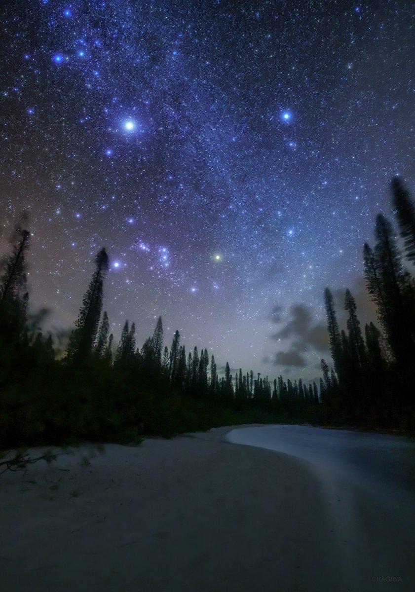 星と海の楽園。(以前、ニューカレドニアにて撮影)一番明るく写っている星はシリウス。オリオン座の傾き方が日本で見るのとはだいぶ違いますね。