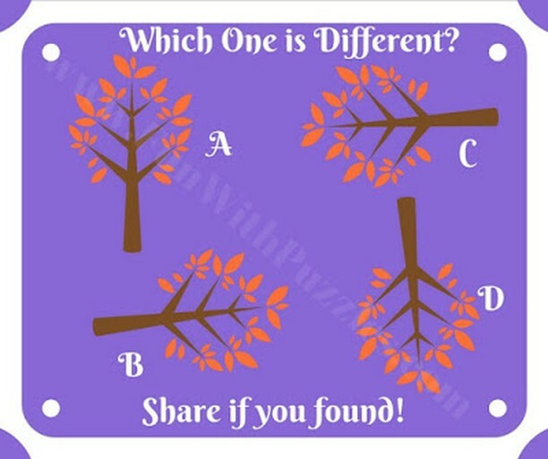 Mind twisting puzzle to find odd one out ⁣ Source: ⁣ #puzzles #puzzle #brainteaser #riddles #riddle #brainteasers #mind #challenge #iq #iqtest #puzzleoftheday #puzzlelover #puzzlegames #puzzlegame #puzzlegenius #puzzlesfordays #puzzleaddict #puzzleadven…
