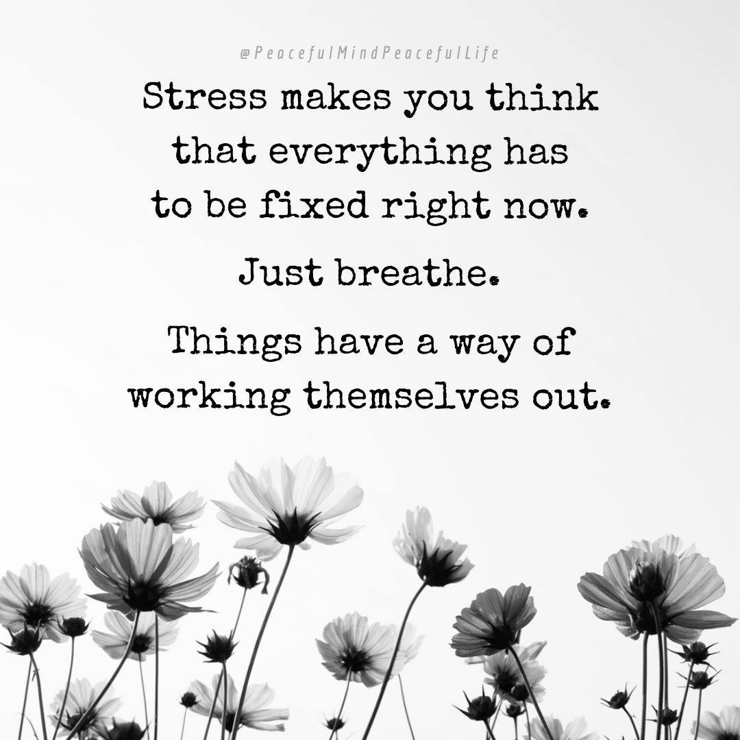 ❤️ So true, just breathe, there's no rush to do things right now 😀  #positive #affirmation #positivity #possibilities #positivethinking #happy #motivation #dreams #goals #believe #grateful #happiness #relaxation #love #solution #kind #gratitude #kindness #wednesdaywisdom ❤️