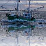 Image for the Tweet beginning: #Noordzee #visserij #kust  Een paar