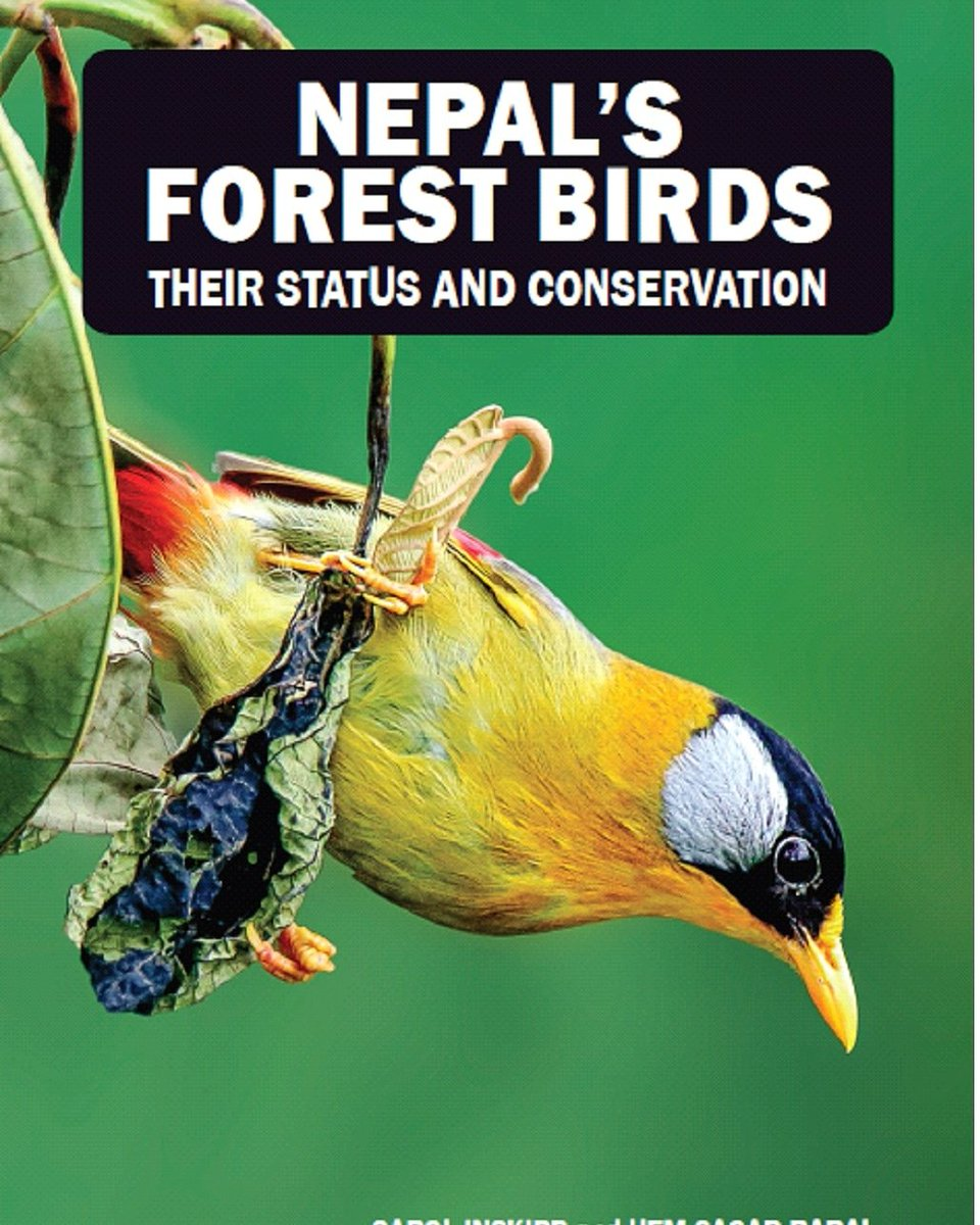 Carol and I thank all who supported publication of this book now available from bookshops. #nepal #forest #birds #author #Congress #conservation #VisitNepal2020 #birdlife #Review #revised #amreading #literature @ZSLconservation @ZSLLibrary @CharlesSturtUni @HimalayanNaturepic.twitter.com/CBWwmIznqd