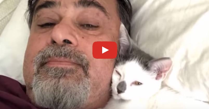 Dad Wasn't a Cat Person Until He Took Care Of Daughter's Cat This video proves there are two types of people - cat people and people who don't yet know they're #cat people! CLICK to watch >
