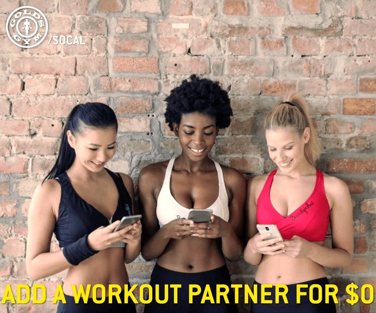 Members!   Add your friends and family all month long for $0! Come into your local @GoldsGymSoCal for details!  #GoldsGymSocal #GoldsFitness #SouthernCalifornia #Workout #PersonalTraining #Healthy #FitSpo #Motivation