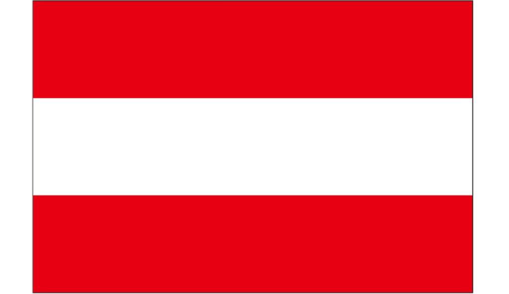 「勝っているうちに辞めたかった」30歳で引退したオーストリアの英雄とは? #国旗 #オーストリア https://love-spo.com/sports-lab/kokki_aut_20200227.html…