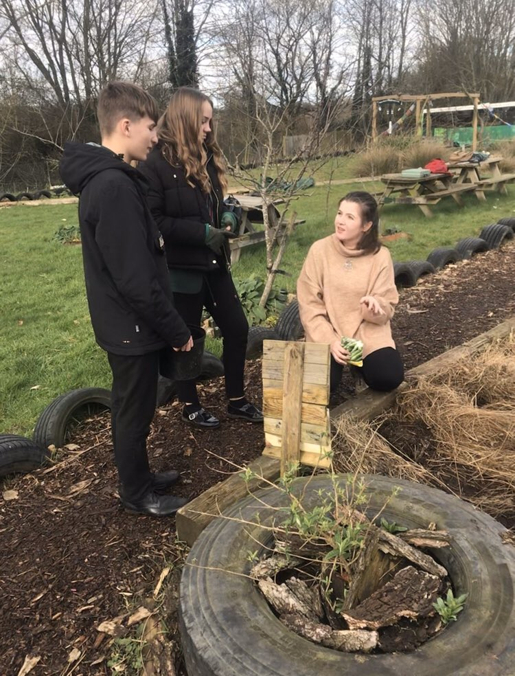 We have used the #permaculture technique to grow potatoes in our new growing area. Thanks to a #community volunteer, Alan, the students used a mixture of compost and manure to plant our potatoes!pic.twitter.com/ra4g18diwW