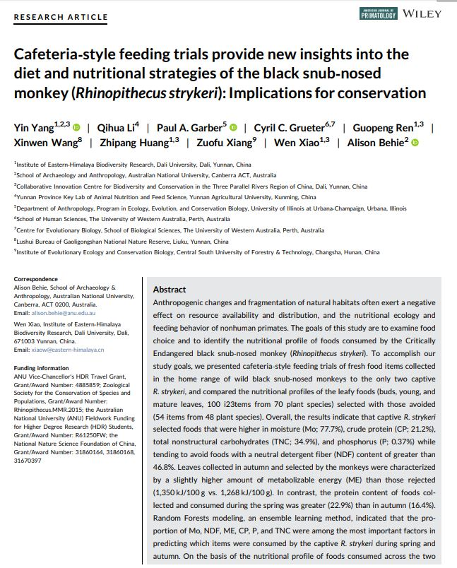 New collaborative paper by our PhD student Yin Yang & A/Prof @BioanthBehie has just been published in the American Journal of Primatology! The research reports on diet and nutritional strategies of the black snub‐nosed monkey (Rhinopithecus strykeri): https://onlinelibrary.wiley.com/doi/full/10.1002/ajp.23108 …pic.twitter.com/uC9JpZ5nmM