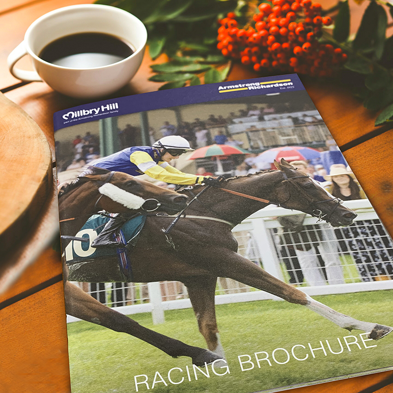 Welcome our new Racing Brochure!  Grab yourself a coffee and browse a fantastic wide range of products for all your racing needs. DM us for a copy! #racing #equestrian #horses #equine #equestrianlife #horselover #racing #stud #yard #brochure #owners #trainers #jockeys #winnerspic.twitter.com/jGJW6uiGUq