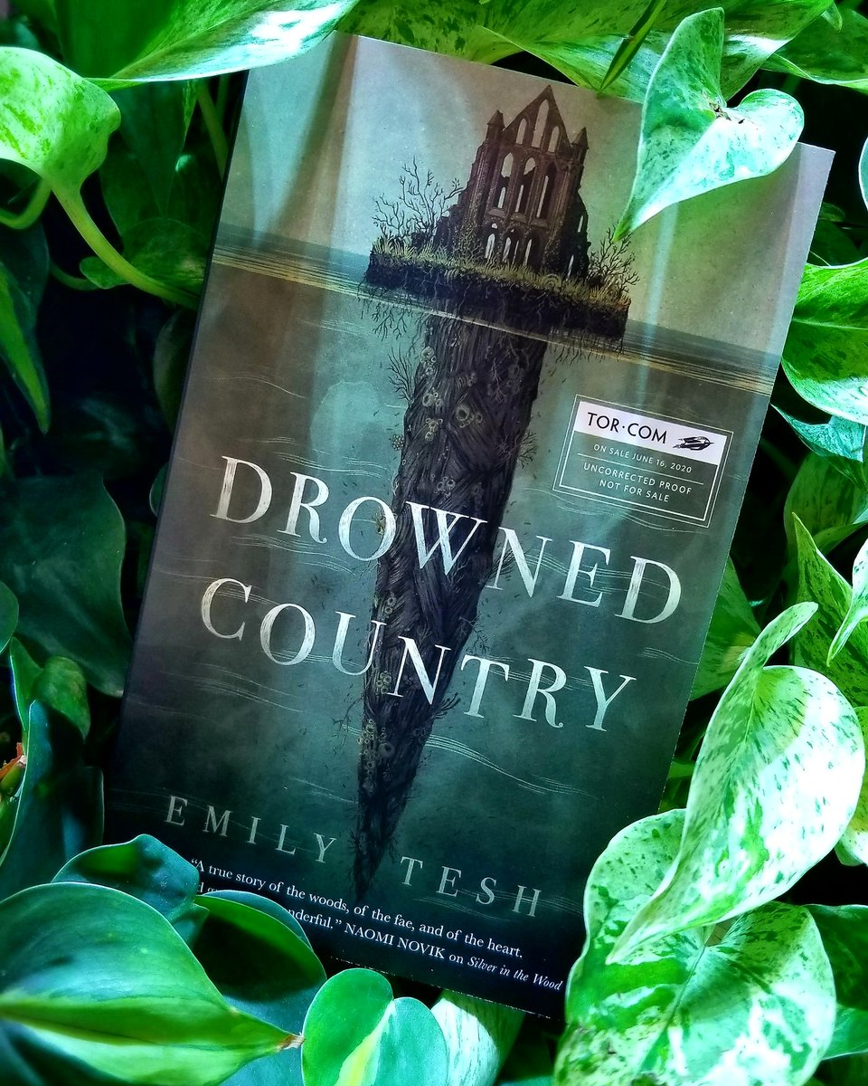 Even the Wild Man of Greenhollow can't ignore a summons from his mother...🍃🍃🍃🍃DROWNED COUNTRY by @emilytesh_uk, sequel to SILVER IN THE WOOD!https://publishing.tor.com/drownedcountry-emilytesh/9781250756596/…