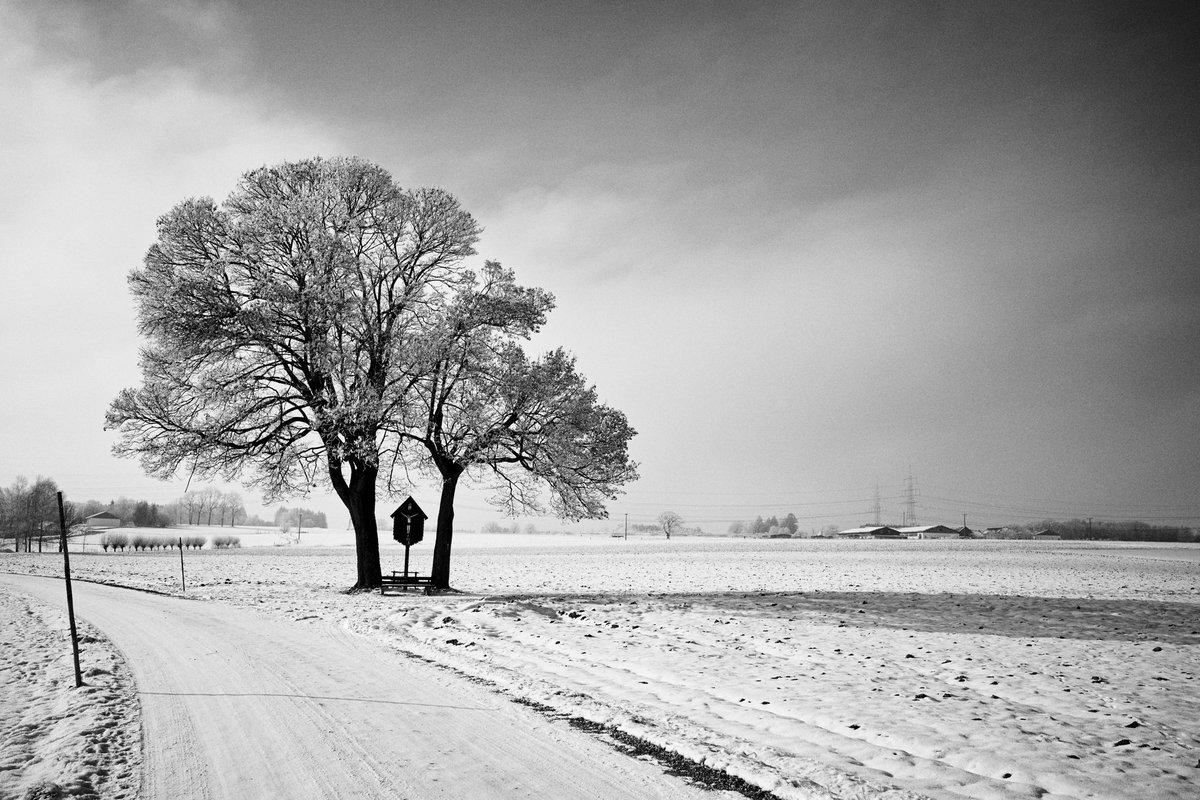 Wayside Cross #ottenhofen #wegkreuz #waysidecross #snow #landscape #grsnaps #ricohgr #bnw #bnwphotography #monochrome #bnw_captures #blackandwhite #photography #schwarzweiss pic.twitter.com/SFKamgyo6H