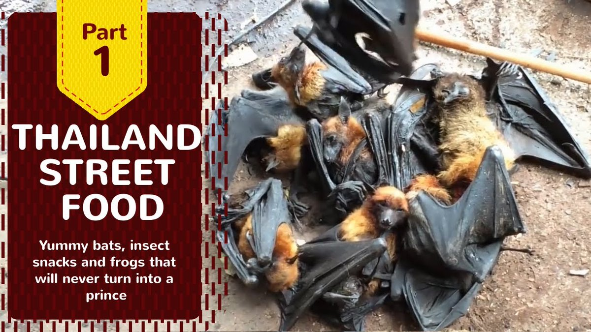 Thailand Street Food: Yummy #Bats, ...  #AnchovySauce #ChiangMai #DeepfriedFrogMeat #Frog #InsectSnacks #Insects #LiverParasites #RottenFish #SoutheastAsiaDestinations #SoutheastAsiaTour #SoutheastAsiaTravel #SoutheastAsiaTrip  https://www.laviezine.com/63291/thailand-street-food-yummy-bats-insect-snacks-and-frogs-that-will-never-turn-into-a-prince/…   .pic.twitter.com/Cio1VHVFET