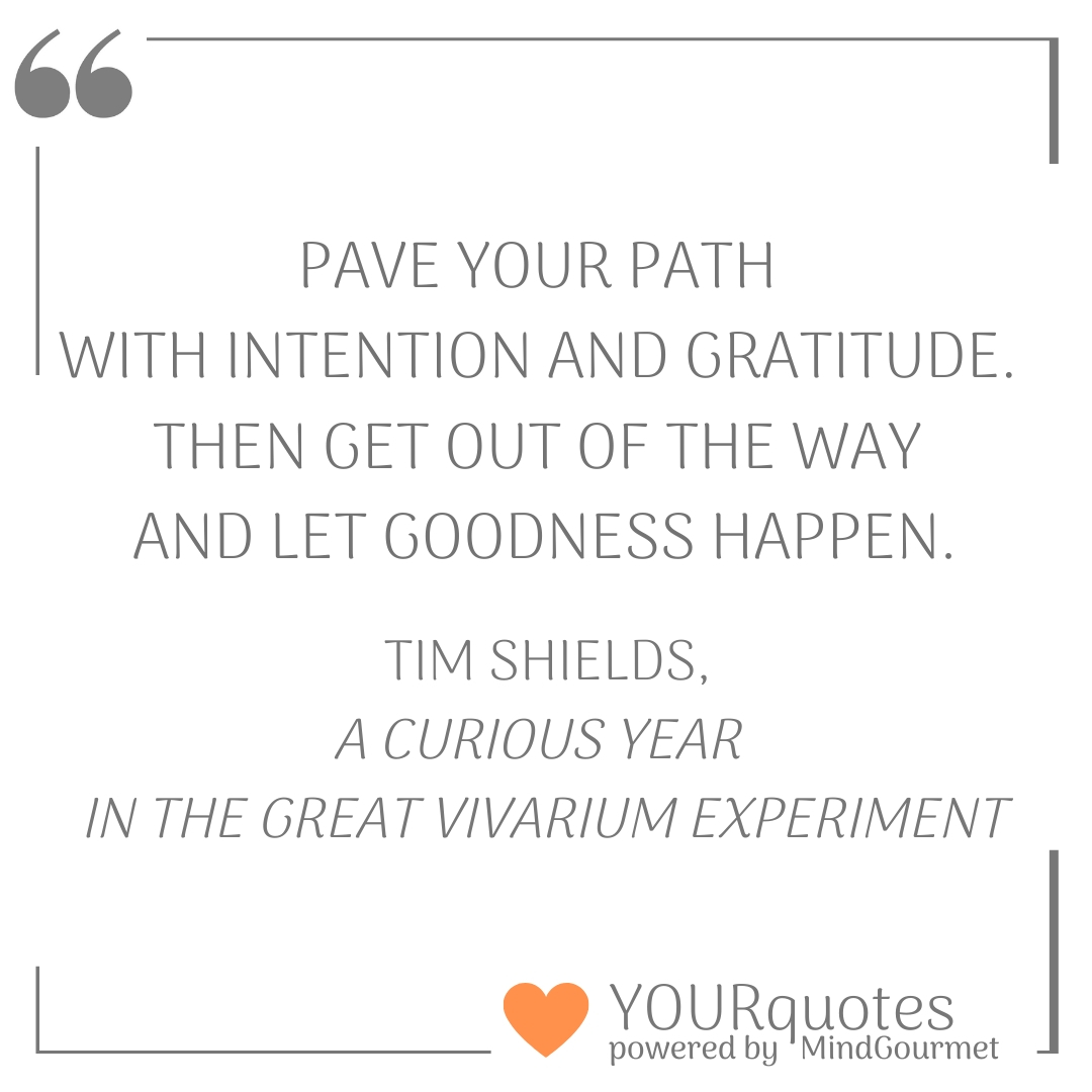 Tim Shields #yourquotes  https://yourquotes-service.com/ #quotespic.twitter.com/U8CltBkI2c