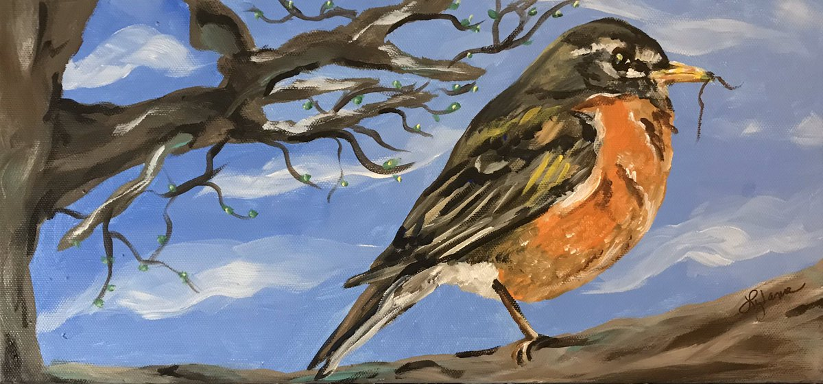 "My newest #acrylicpainting -""Thinking Spring,"" 8x17"" on wrapped canvas. #art #artist #artists #artistsontwitter #artontwitter #ArtistOnTwitter #birds #spring #robins #painting @meetmyart"