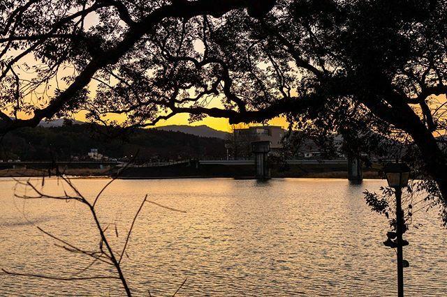 #夕焼け #Hita #風景 #CANON #instaphoto #landscape #instagood #instafollow #instamoment #instacool #instalike #instadaily #eos #5dmk3 #OLYMPUS #OMDEM5mK2 #カメラ日 #japan_of_insta #visitjapan #今日の一枚 #写真撮っている人と繋がりたい https://ift.tt/3a5pswvpic.twitter.com/ePia4F6rhJ