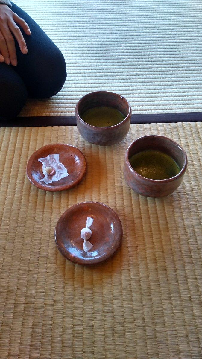 私は竹島の浜辺で遊んだ後に海辺の文学記念館へ寄り、竹島を眺めながら抹茶を飲んできました。  がまポンはそこで貰いましたよ!  すごく良い所はなので立ち寄ってみて下さい。  #愛知県蒲郡市 #海辺の文学記念館  #竹島 #蒲郡 #いい眺め #落ち着く #癒やし空間 #子育て #子育てママ #女の子ママ