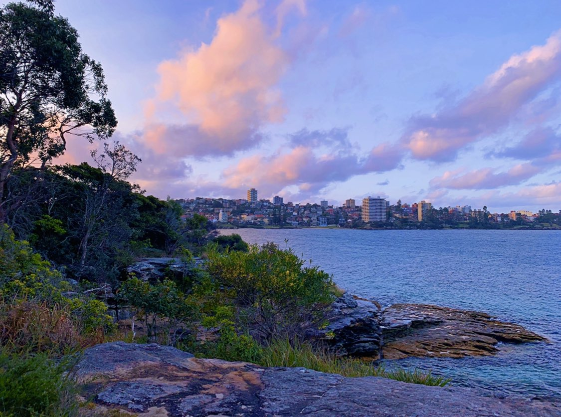 #febdechart day 26 (pink) + 28 (garden).  beautiful pink sunset over the wild 'garden' of sydney harbour national park. love going for walks here.  #nature #outdoors #sydney #photography #dechartgames #connorarmy @bryandechart @ameliarblairepic.twitter.com/BQsVMD5udr