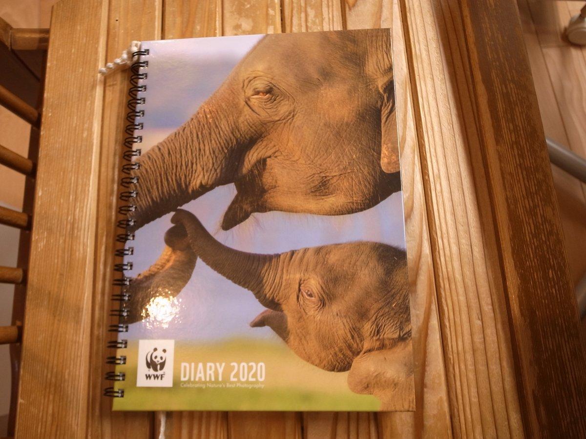 WWFショップでダイアリーが値引きになってたので、子に買ってあげたら、さっそく1行日記書くわ、気に入った写真の模写するわで、活用しまくってる。 pic.twitter.com/DuvR811d3Z