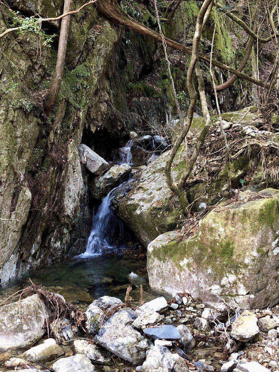 半国山(はんごくやま)赤熊コース(その6) https://t.co/czXFRQfZcd  #山行記録 #山行 #ハイキング #ハイキングコース #hiking #半国山 #登山 #mountainclimbing #山登り #日本 #japan #京都府 #亀岡市 #山 #mountain #京都の山 #滝 #waterfall #赤熊 #赤熊コース #登山道 #trail #valley https://t.co/yORBJWbswT