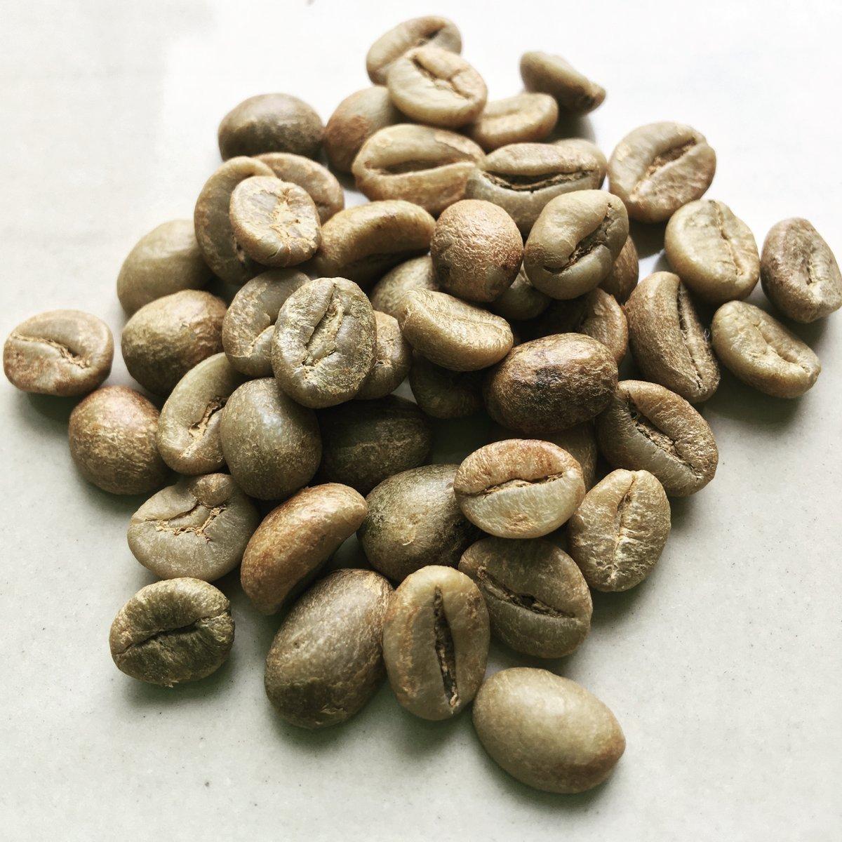 #greenbeans #coffee #coffeebeans #magelang #java #robusta #kopi #kopisme