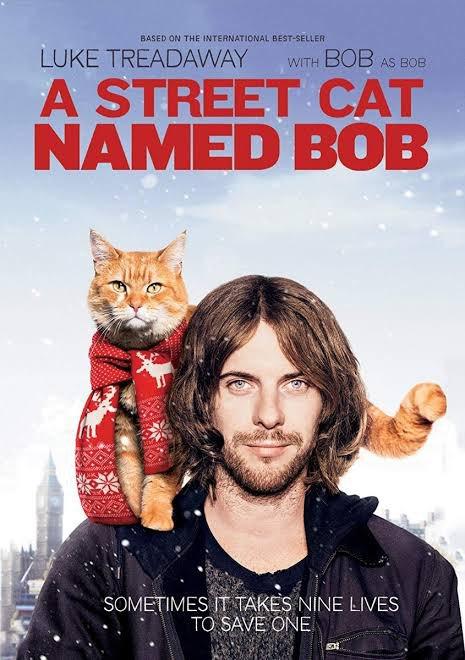 #movieday #truestory #Netflix #AStreetCatNamedBob #LIONpic.twitter.com/WuWtj1kdRG