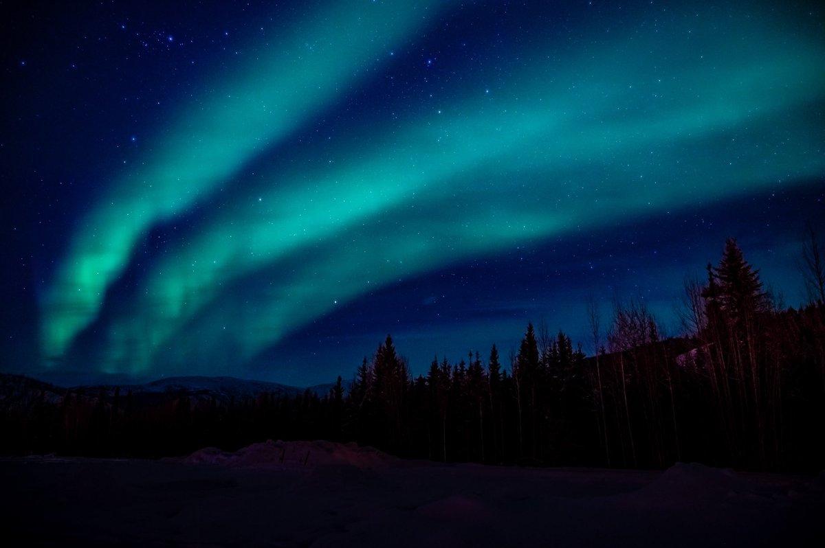 1日1枚、フェアバンクスのオーロラ写真。 雲に隠れたオーロラ。  3本のオーロラ。空に何本も同時に出るのって、今までずっと合成写真だと思ってました。本当ですよ!  世の中のカメラマンの皆さん、ごめんなさい  #フェアバンクス #オーロラ #北極 #よりもい聖地巡礼旅 https://t.co/FUE3qBkRbN